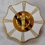 Vasa nations förtjänsttecken i guld